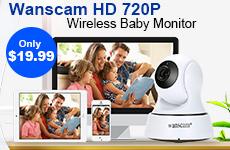 Wanscam HD 720P