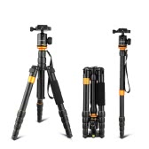 Andoer Professional Foldable Detachable Adjustable Photography Digital Camera Camcorder Video Tripod Monopod Ball Head for Canon Nikon Sony Panasonic DSLR