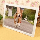 "17"" LED High Resolution 1440*900 Digital Photo Picture Frame"