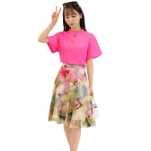 New Sexy Women Two-Piece Set Stand Collar Hollow Out Chiffon Tops Mesh Floral Print Zipper Dress Rose