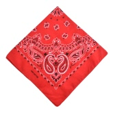 Men Women Square Scarf Paisley Bandana Hair Band Neckerchief Hip Hop Kerchief Unisex Headwear