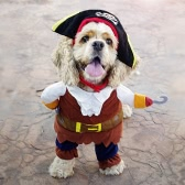 Cute Pet Pirate Costume Suit Apparel Dog Puppy Cat Clothes Coat Corsair Dressing Clothing Cosplay with Skull Hat