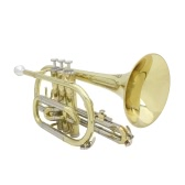 Professional Bb Flat Cornet Brass Instrument with Carrying Case Gloves Cleaning Cloth Grease Brushes