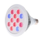 Tomshine Led Grow Bulb Plant Light E27 12W/24W 12LEDs 3 Blue & 9 Red Growing Plant Lamp for Indoor Hydropoics Garden Organic Vegetables Flower Mini Greenhouse (3 Bands)