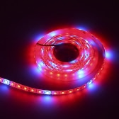 72W DC12V SMD5050 5M 300 LEDs 5 Red 1 Blue Hydroponic Plant Grow Light Strip Water-Resistant Vegetables Herbs Flowers Lamp Greenhouse Indoor Garden