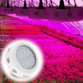 216W AC85-265V 72LEDs 21600LM Plant Grow Light Full Spectrum Vegetables Herbs Flowers Lamp Greenhouse Indoor Garden Hydroponic EU Plug