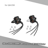 2Pcs 2204 2300KV Brushless CW/CCW Motor for QAV250 280 RC Quadcopter Drone
