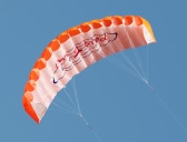 Outdoor Sports Dual Line Stunt Parafoil Kite 1.4m Power Soft Kite with Handle 30m Line