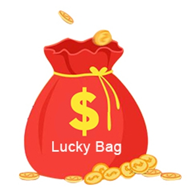 Lucky Bag for Poplar Toys & Hobbies and More