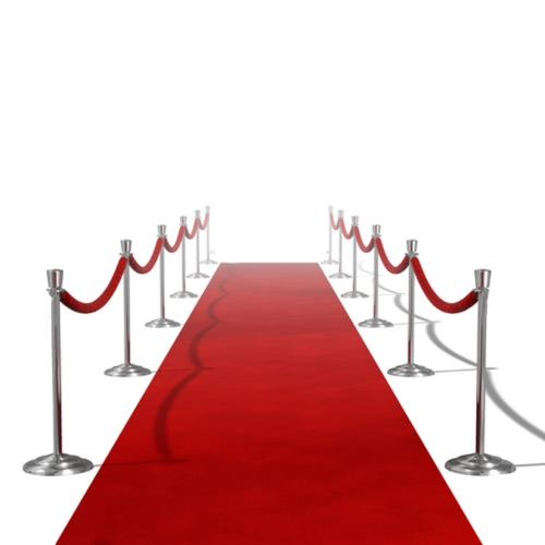 Buy Red Carpet 1 x 20 m
