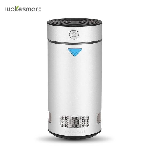 Intelligent Refrigerator Deodorizer Ozone Anion Sterilizer Ionizer