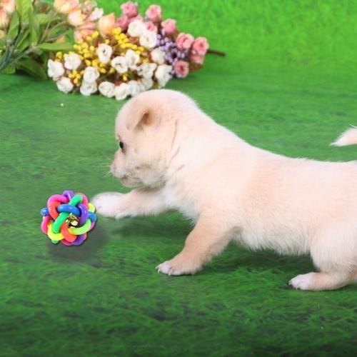Haustier hund beißen zähne spielzeug bunt gummi klingeln l