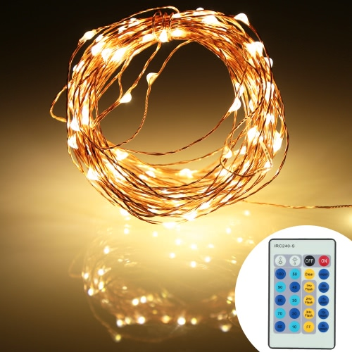 DC12V 6W 10M 100 LEDs Silver Copper Wire LED Light Strip & 2A Power Adapter & Remote Control Christmas Holiday Festival Decorations